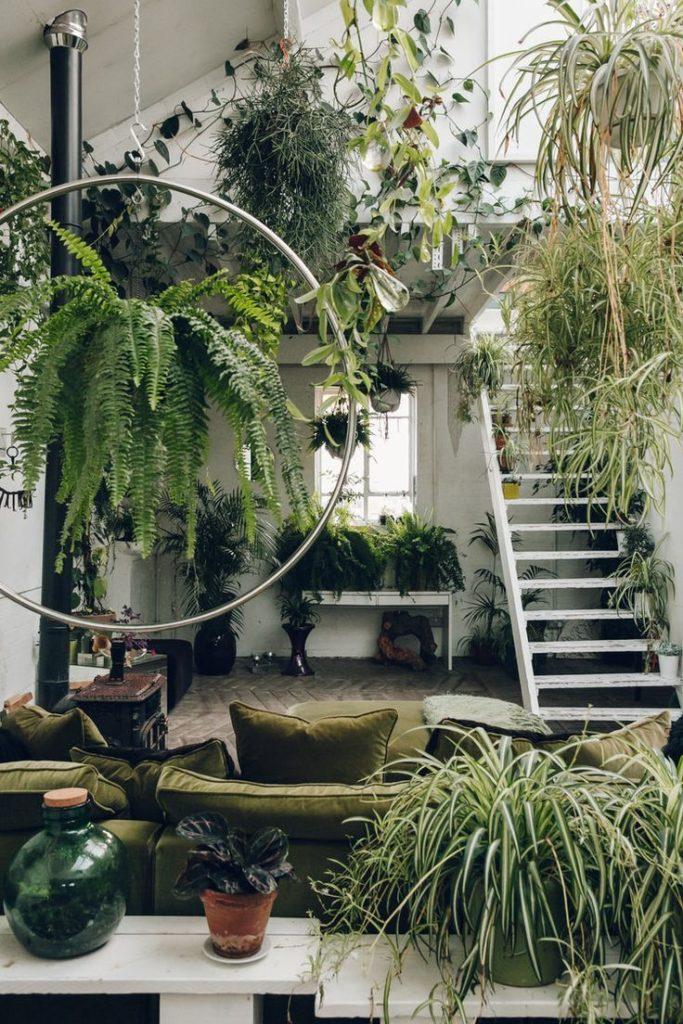 Interior Garden - IANIKO