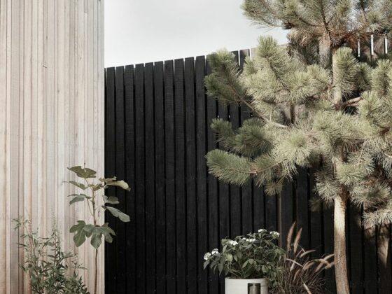 IANIKO - How to Design the Ultimate Minimalist Garden