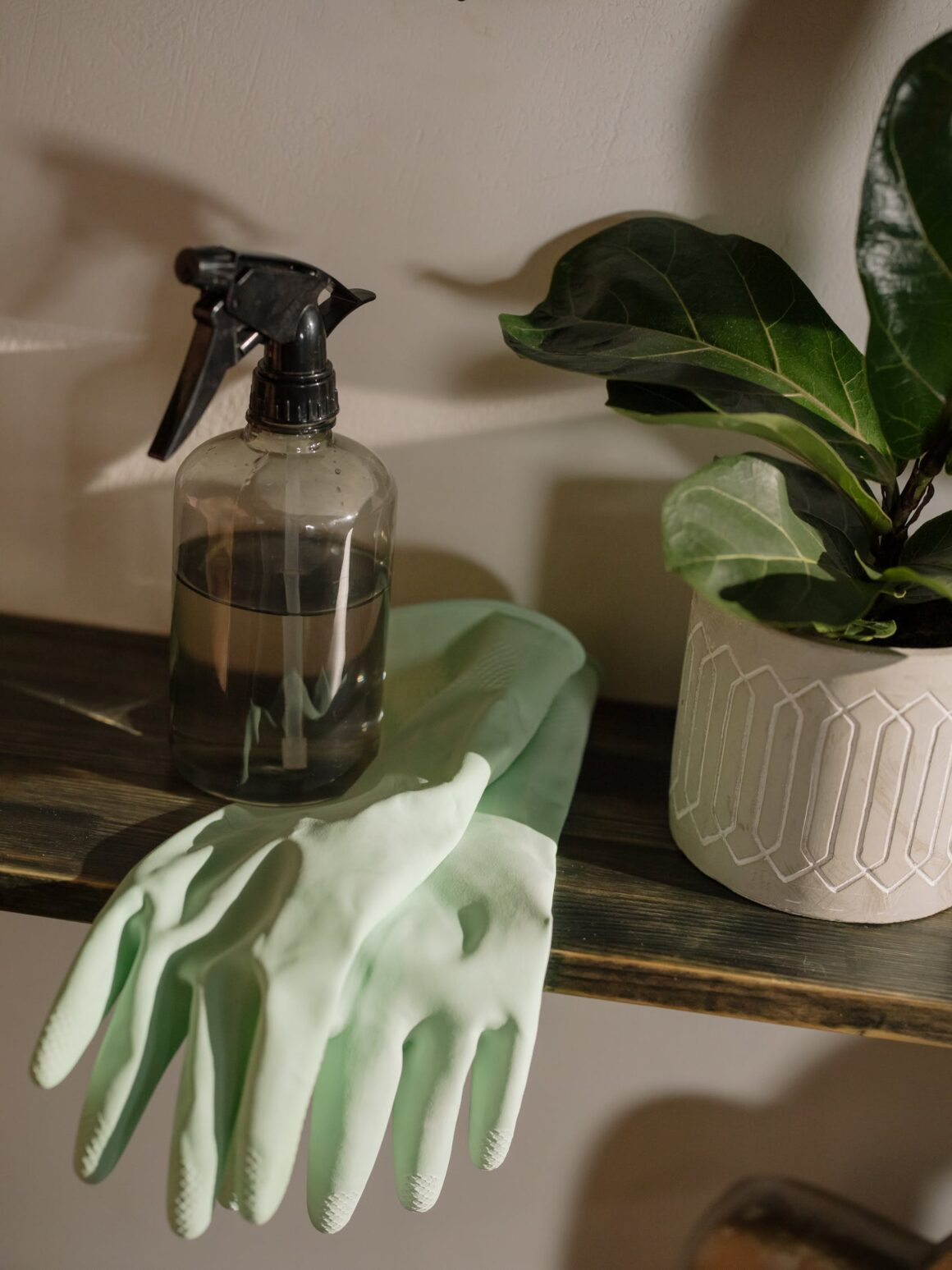 The Only List of Non-Toxic Cleaning Products You Need